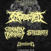 Ingested,  Extermination Dismemberment, Stillbirth