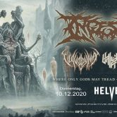 Ingested, Vulvodynia and more